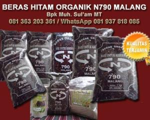 Jual manfaat bekatul beras merah asli organik untuk diet obat kesehatan